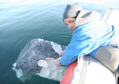 grey-whale-chunk_popup